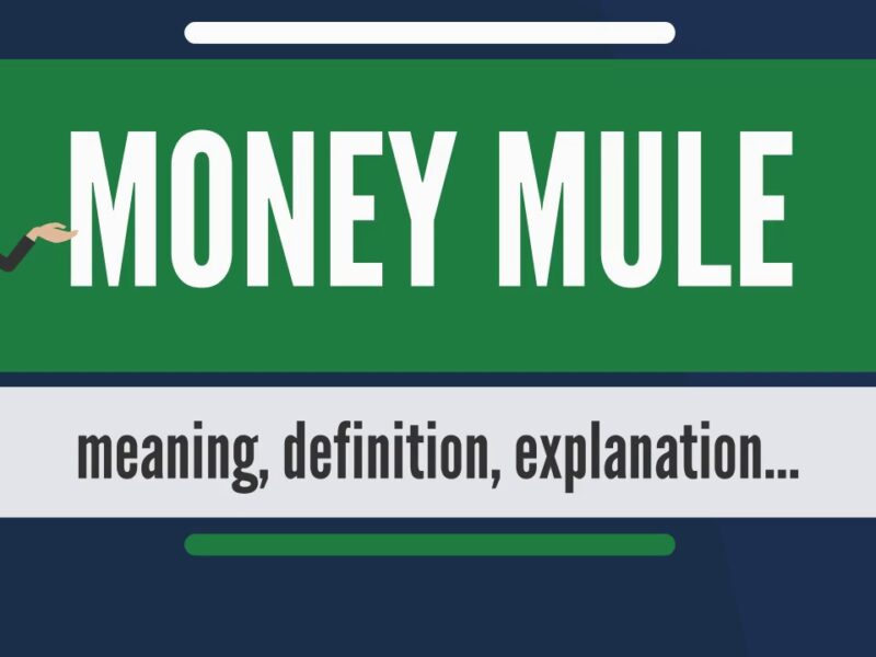 What is Money Mule, All You Need to Know About Money Mules.